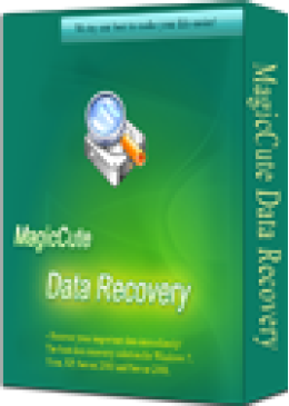 (CS) MagicCute Data Recovery License Key - 1 Year