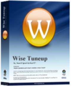 Wise Tuneup PC Support - Super Plan - Three Years / Three Computers